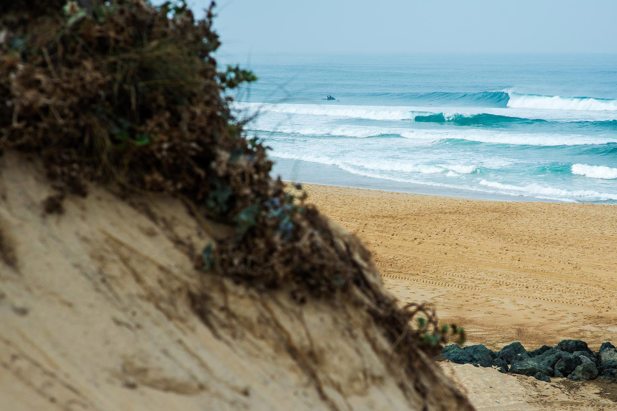 The result is the surfers' paradise of South West France. Where forest