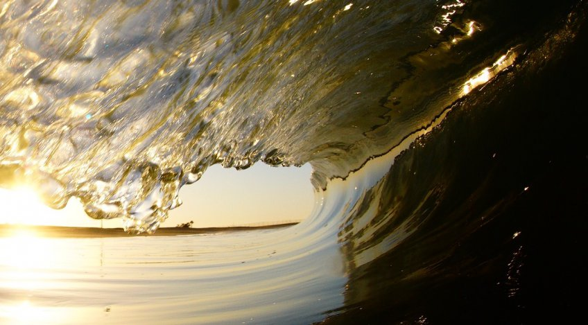 International Surf Day
